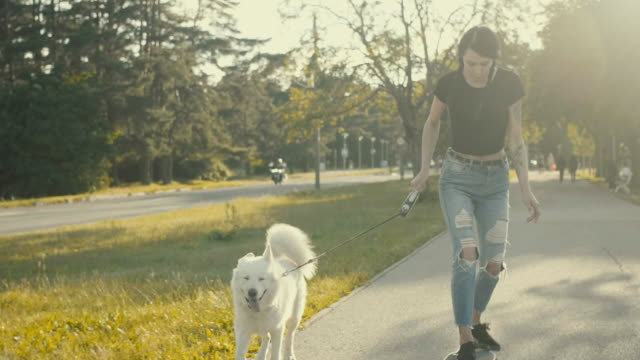 young woman skateboarding with the pet dog (slow motion) - white stock videos & royalty-free footage