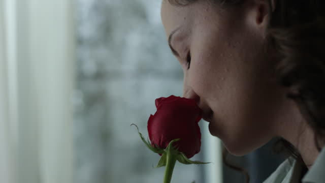 young woman smelling red rose - scented stock videos & royalty-free footage