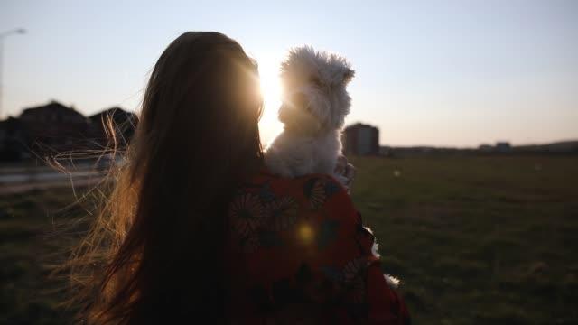 Junge Frau steht auf Wiese und hält entspannt maltesischen Hund am sonnigen Frühlingstag