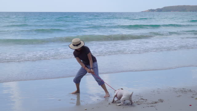 young woman struggling with jrt on sunny beach - pulling stock videos & royalty-free footage
