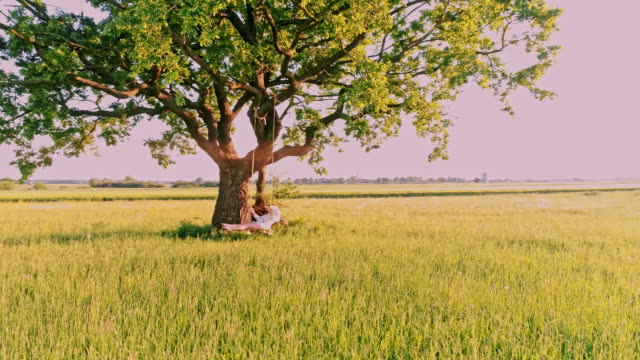 aerial young woman swinging on a tree on the meadow - slovenia meadow stock videos & royalty-free footage