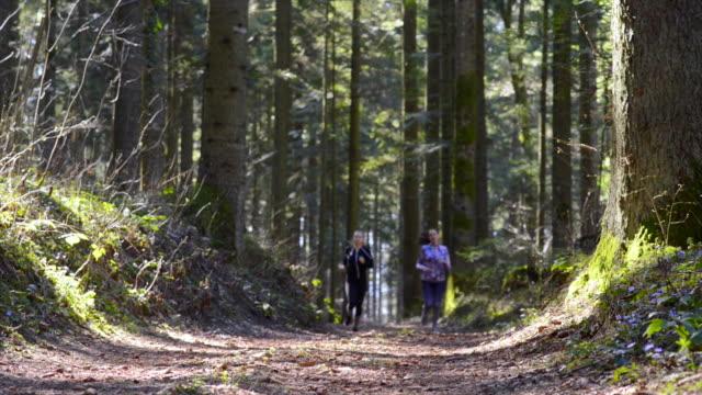 vidéos et rushes de jeune femme prenant une courte pause pendant le jogging - joggeuse