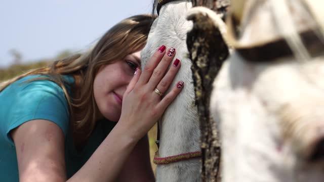 vídeos de stock, filmes e b-roll de jovem cuidando de seu cavalo - perto de