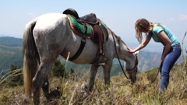 young woman taking care of her horse - bridle stock videos & royalty-free footage