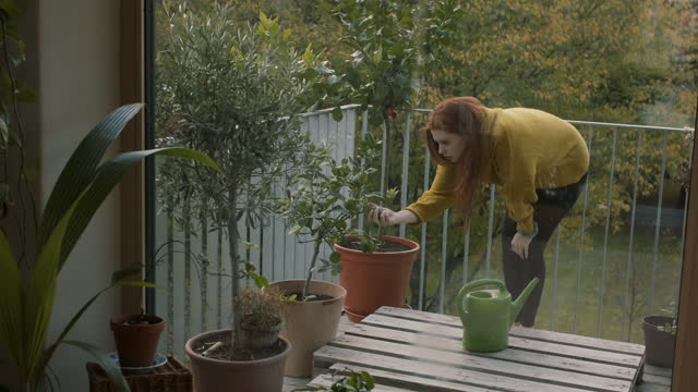 young woman taking care of plants on balcony - young women stock-videos und b-roll-filmmaterial