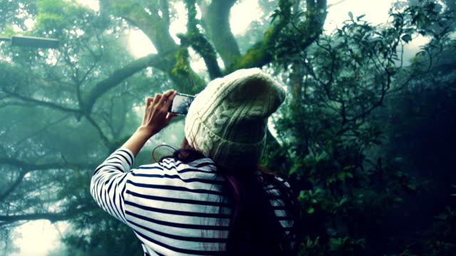 Young woman taking panorama pictures of misty forest with her smartphone at Yang Ming Shan, Taiwan