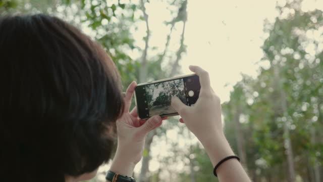vidéos et rushes de jeune femme de prendre des photos dans la forêt. - photophone