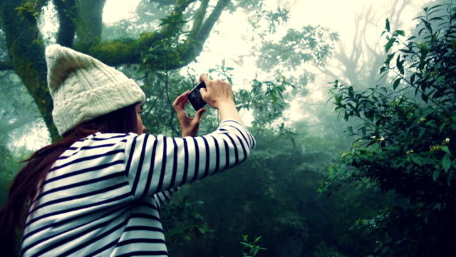 Young Woman tourist using smartphone take a photo of misty forest at Yang Ming Shan, Taiwan