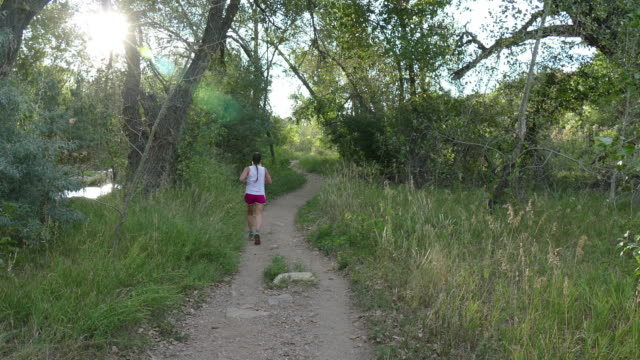 young woman trail runs along bear creek morrison colorado - cottonwood tree stock videos and b-roll footage