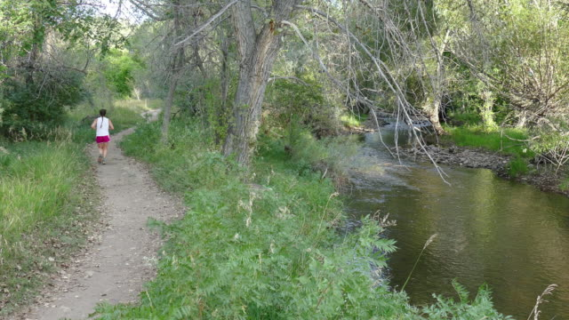 young woman trail runs along bear creek river morrison colorado - cottonwood tree stock videos and b-roll footage