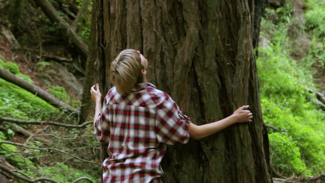 ms pan td young woman tree hugging / big sur, california, usa - schwenk nach unten stock-videos und b-roll-filmmaterial