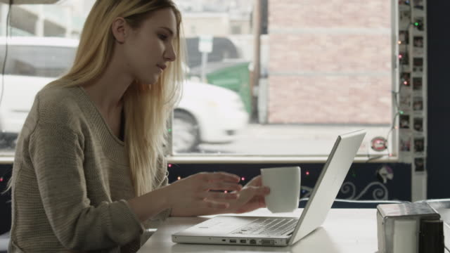 ms young woman using laptop in diner / provo,utah,usa - provo stock-videos und b-roll-filmmaterial
