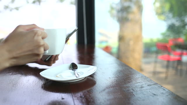 junge frau benutzt smartphone in einem restaurant - drahtlose technologie stock-videos und b-roll-filmmaterial