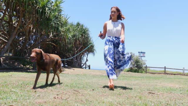 young woman walking a dog - pacific islanders stock videos & royalty-free footage