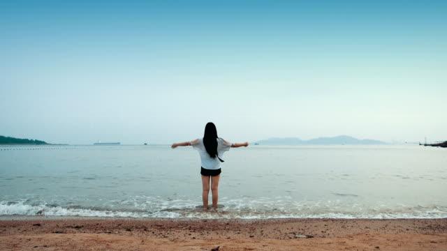 vídeos y material grabado en eventos de stock de joven mujer caminando sola en la playa - espalda humana