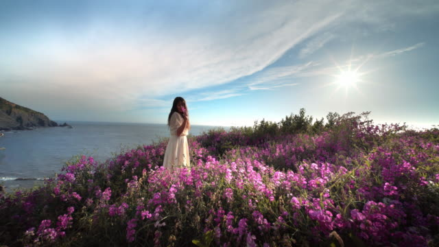 young woman walking and picking flowers in field overlooking pacific ocean - picking stock videos & royalty-free footage