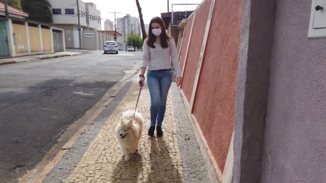 young woman walking at street with her dog and wearing protective face mask. - pets stock videos & royalty-free footage