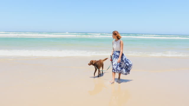 young woman walking her dog at the beach - pacific islanders stock videos & royalty-free footage