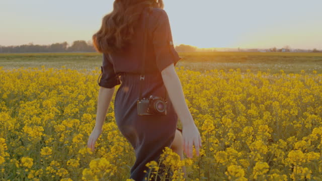 slo mo ms ts young woman walking in field of rape - fashion photography stock videos & royalty-free footage