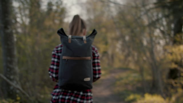 vídeos de stock e filmes b-roll de young woman walking in forest with backpack - field