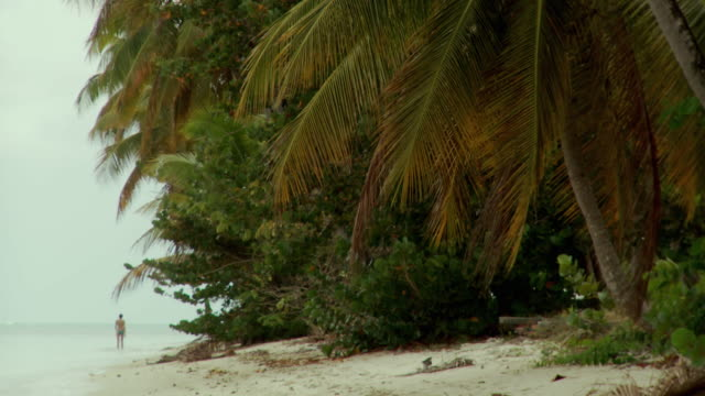 ws young woman walking on beach / scarborough, tobago, trinidad and tobago - entfernt stock-videos und b-roll-filmmaterial