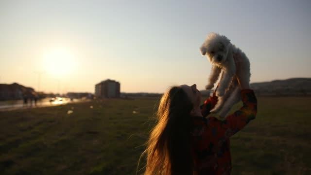 Junge Frau zu Fuß auf Wiese und die Erhöhung der Ruhe maltesischen Hund am sonnigen Frühlingstag
