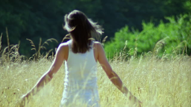 vidéos et rushes de ms, young woman walking through grass in meadow, rear view, saint ferme, gironde, france - cheveux raides