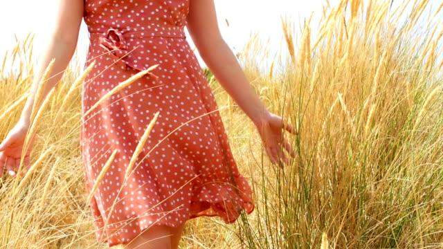 vídeos de stock e filmes b-roll de young woman walking through sand dunes and reeds - erva marinha