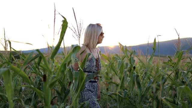 Young woman walking trough corn field at sunset
