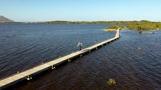 a young woman walks across a wooden walkway over a water estuary - wildlife conservation stock videos & royalty-free footage