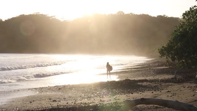 vidéos et rushes de young woman walks along beach at surf edge - république du panama