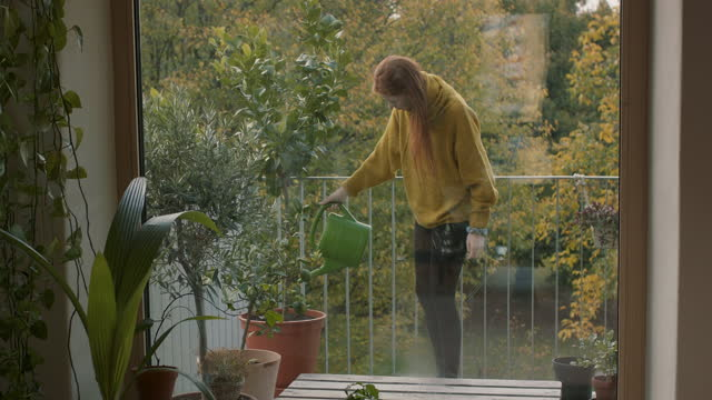 young woman watering plants on balcony - gardening stock videos & royalty-free footage