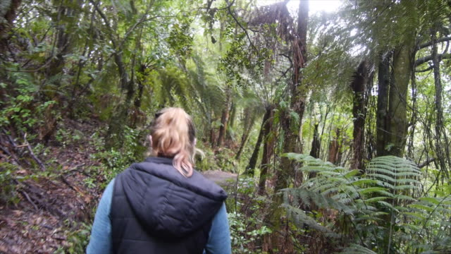 vídeos de stock, filmes e b-roll de a young woman wearing a puffy jacket vest hoodie hiking on a tropical trail through a forest. - slow motion - vest