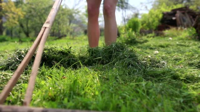 young woman wearing red pumps digging flower or vegetable bed - gräs bildbanksvideor och videomaterial från bakom kulisserna