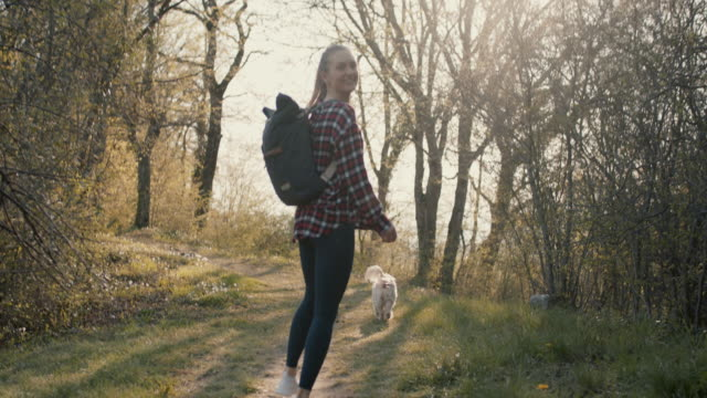 young woman with backpack and dog walking in forest - baumbestand stock-videos und b-roll-filmmaterial