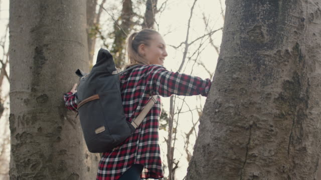 young woman with backpack climbing on tree - fashionable stock videos & royalty-free footage