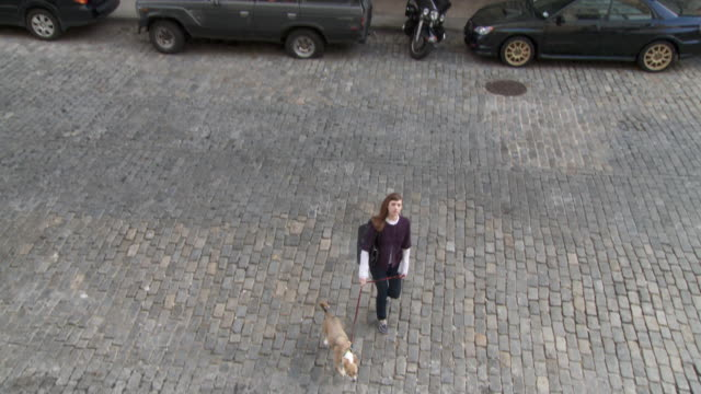 ha, cs, young woman with dog crossing cobblestone street, new york city, new york, usa - cobblestone stock videos & royalty-free footage