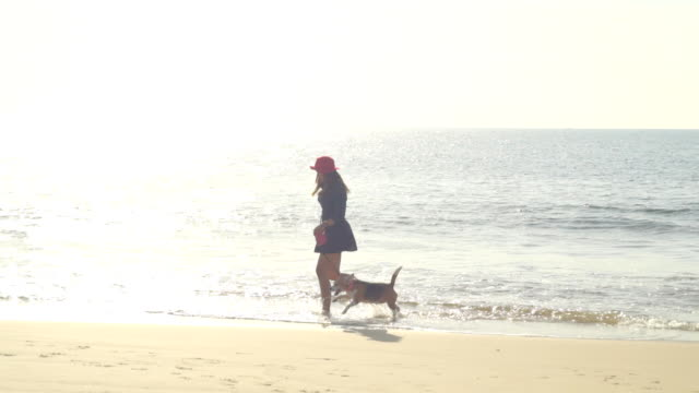 young woman with dog on the beach slow motion - hound stock videos & royalty-free footage