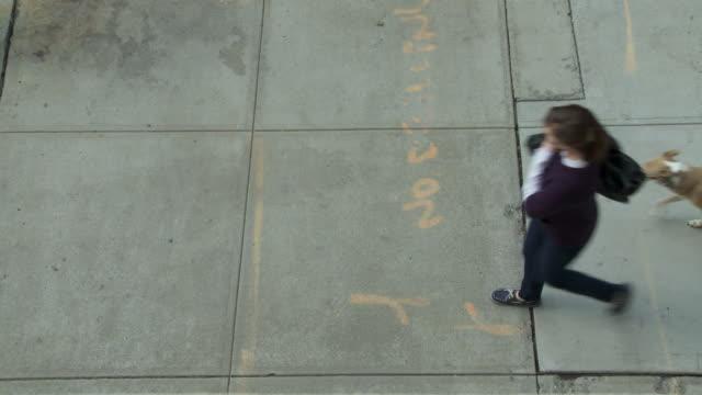 HA, MS, Young woman with dog walking on sidewalk, New York City, New York, USA
