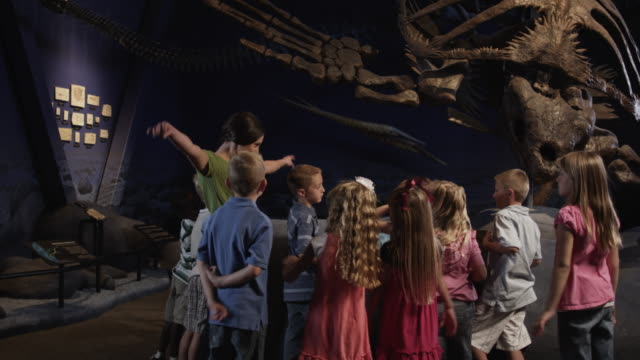 vidéos et rushes de ms young woman with group of children (4-5, 6-7, 8-9) in natural history museum, lehi, utah, usa - musée