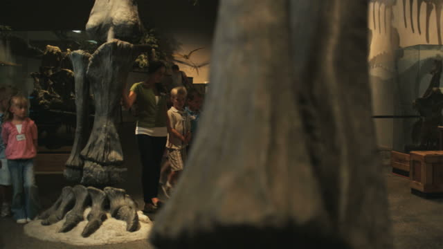 ws pan young woman with group of children (4-5, 6-7, 8-9) in natural history museum, lehi, utah, usa - museum stock videos & royalty-free footage