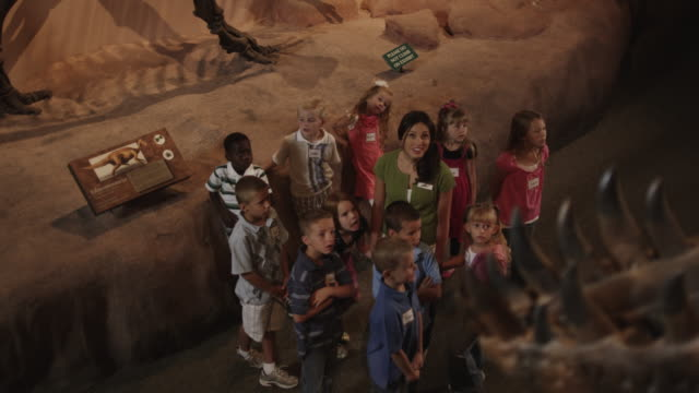 MS HA Young woman with group of children (4-5, 6-7, 8-9) in natural history museum, dinosaur's teeth in foreground, Lehi, Utah, USA