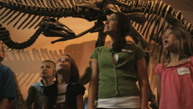 MS LA PAN Young woman with group of children (4-5, 6-7, 8-9) in natural history museum, dinosaur's teeth in foreground, Lehi, Utah, USA