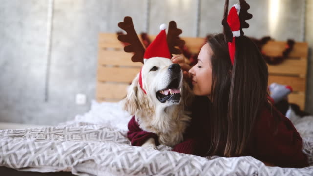 young woman with her dog waiting for incoming holidays - tradition stock videos & royalty-free footage