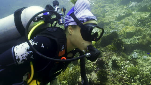 a young woman with scuba equipment swims past a large green coral structure - kuta, indonesia - aqualung diving equipment stock videos & royalty-free footage