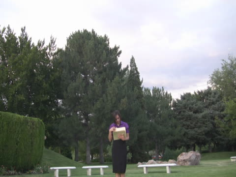 young woman with some folders - pinaceae stock videos & royalty-free footage