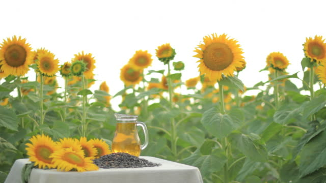 hd young woman with sunflower oil jug - pitcher jug stock videos & royalty-free footage