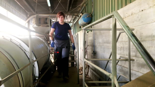 young woman worker in raw material processing facility - genderblend stock videos & royalty-free footage