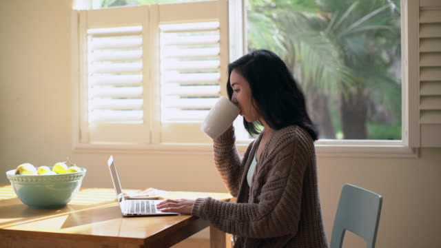 ms young woman working on her laptop drinking coffee - beautiful people stock videos & royalty-free footage
