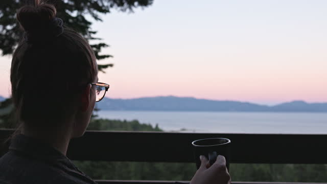 young woman working on laptop on deck with lake and mountain view - pinaceae stock videos & royalty-free footage